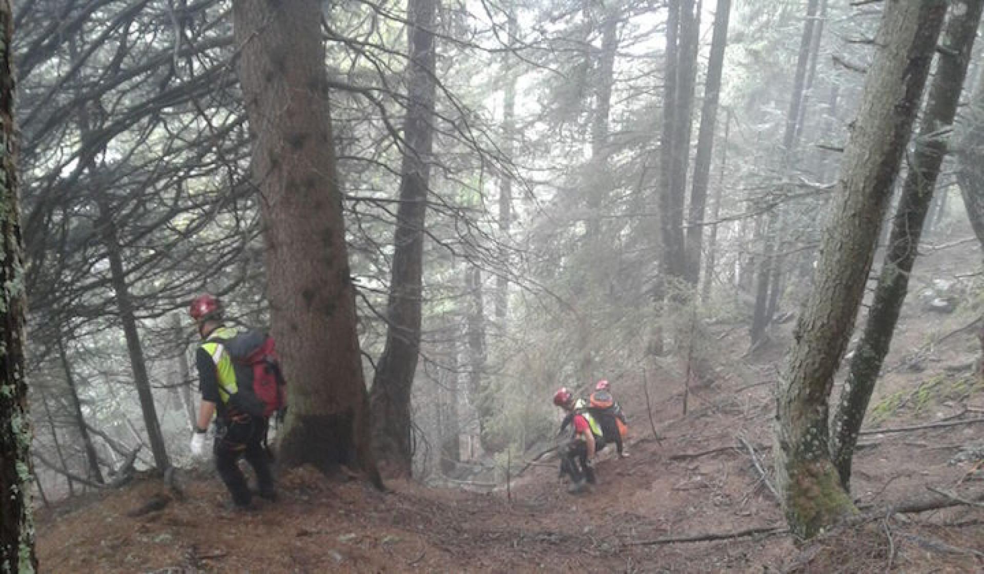bosco con soccorritori